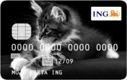 Karta Platnicza Z Wlasnym Zdjeciem Standard Czy Luksus Dla